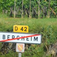 Bergheim im Elsass - Bild 6 - OCRE Elsass-Rundfahrt - Juni 2017