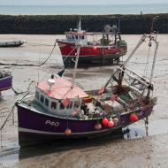 Aussicht auf das am Meer gelegene Folkstone - Bild 6 - OCRE Clubtour in die Grafschaft Kent * Mai 2016